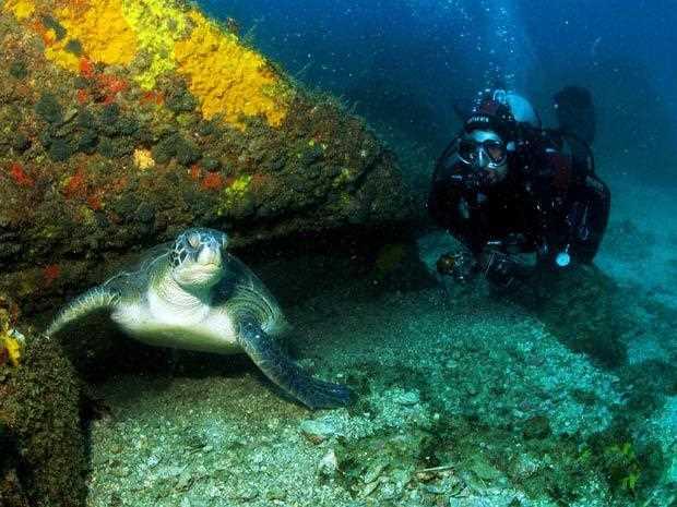 [Fotos Noosa Brasil Surf Republic]